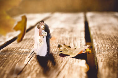Miniature wedding by AntonioGN