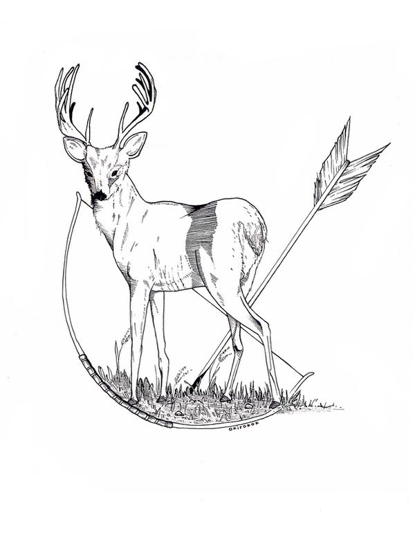 Ceryneian Hind Drawings