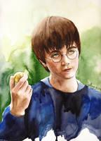 Potter by maya-Notliketheother