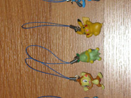 Pokemon Charms +complete+