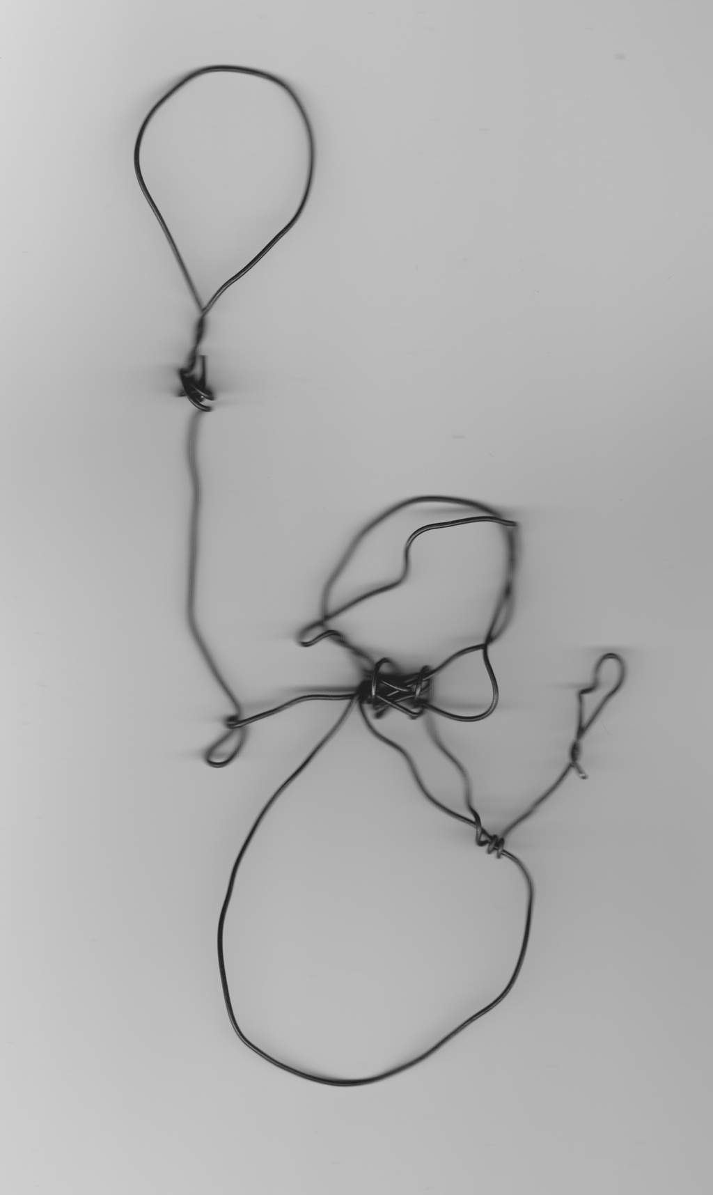 2D Wire Sculpture By Celestrai