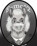 Einstein Llama