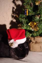 Little Santa by Arayashikinoshaka