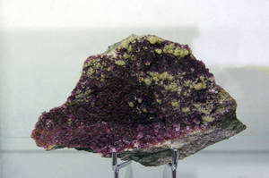 Deep purple by Arayashikinoshaka