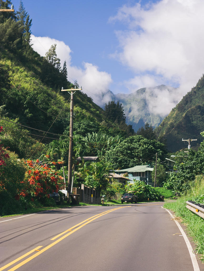 Road to Iao Valley by jbritz22