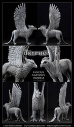 Gryphon : Fantasy Anatomy Model, Pre-Order Now! by emilySculpts