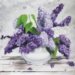 Lilac Flowers in White Pot