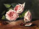 Pink Rose Vignette