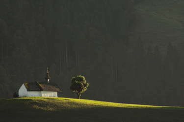 Golden Ray by Addran