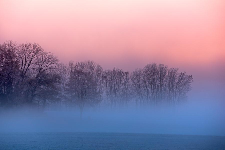 Blue Fog by Addran