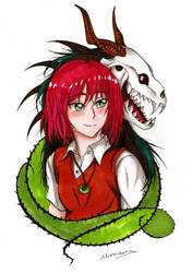 Mahoutsukai no yome_Chise and Elias by alexaAnime1
