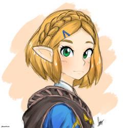Zelda - Breath of the Wild Sequel by AnanasArt