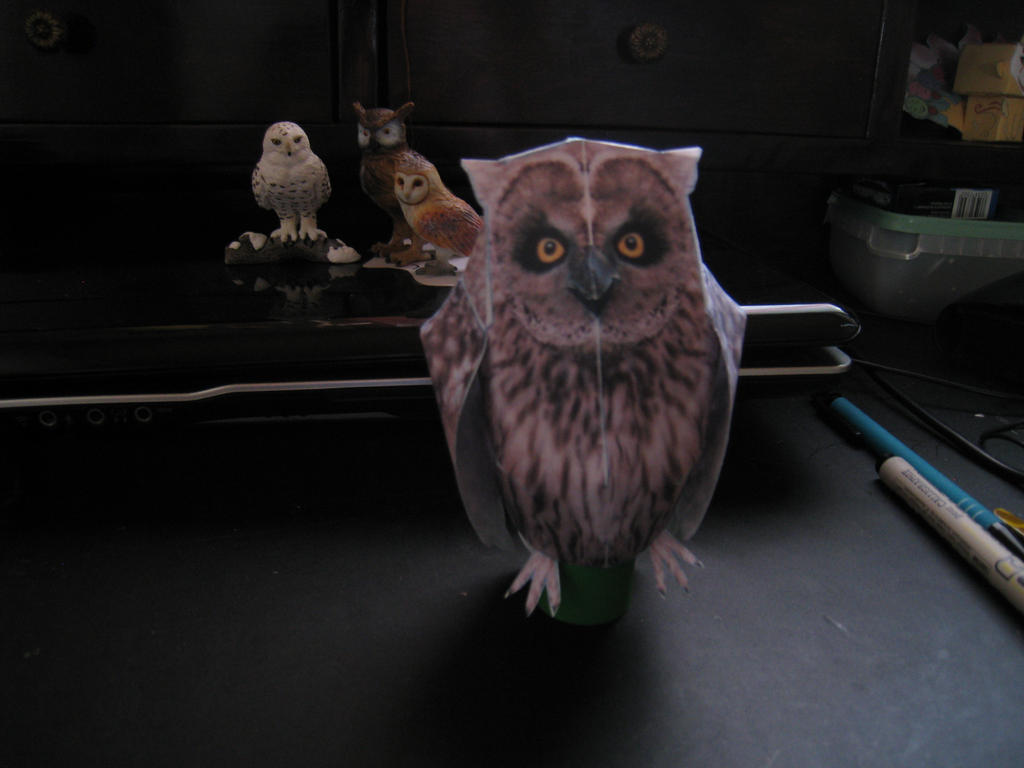 Papercraft owl by wolfthebredator on deviantart papercraft owl by wolfthebredator jeuxipadfo Image collections