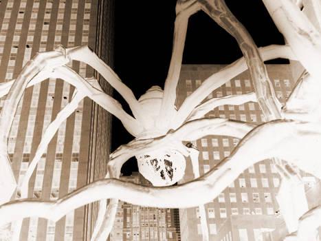 spiders attack