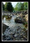 Backyard Brook