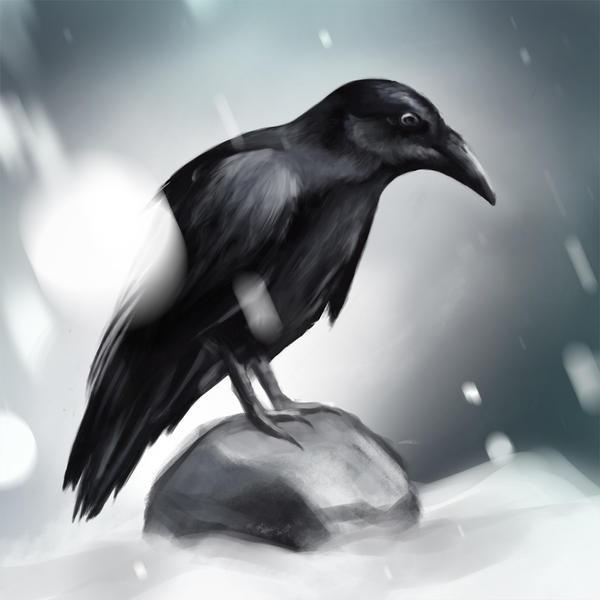 Black winter by OtravitusBianca