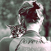 i love cats icon by dilduks