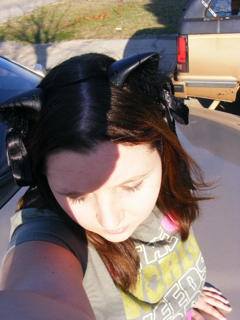 FallensTear's Profile Picture