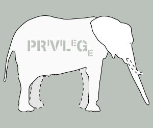 Captured Elephant by Privilege