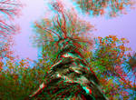 Growing 3D Anaglyph