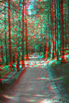 The Path2 3D anaglyph
