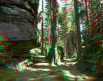 Through the Gorge 3D Anaglyph