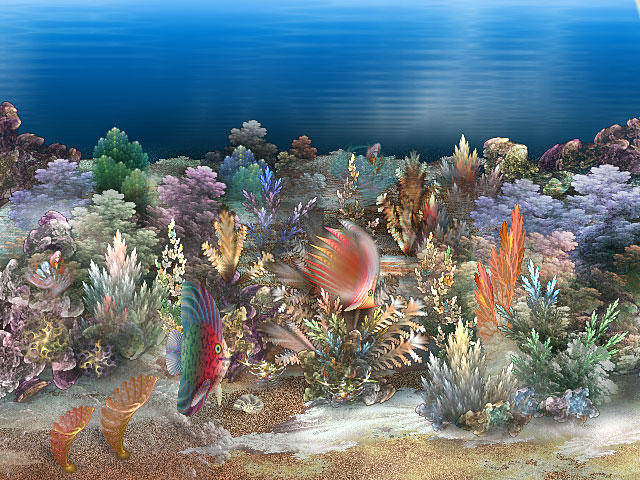 Coral Reef 2 by segami