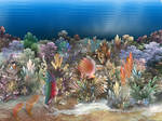 Coral Reef 2 by segami