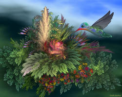 Hummingbird 3 by segami