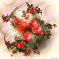 Red Flower by segami