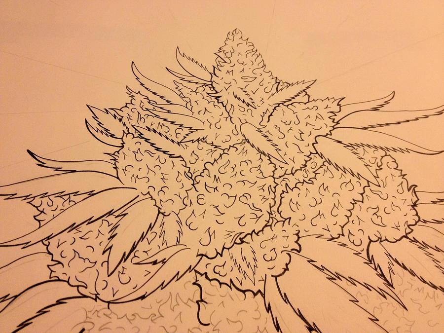 Marijuana Close Up tattoo design by allyyjames on DeviantArt