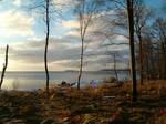 Sunrise in Sweden 1