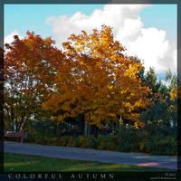 Colorful Autumn 1 by parsek76