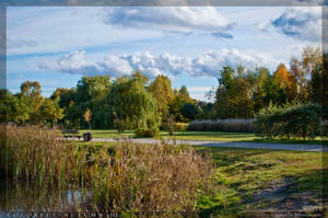 Colorful Autumn 3 by parsek76