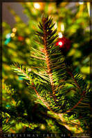 Christmas tree 04 by parsek76