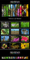 Colours of Nature - calendar by parsek76