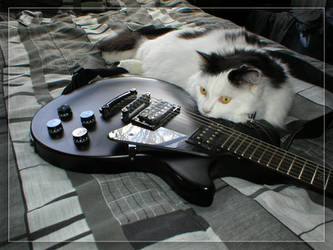 Les Paul cat by colony26