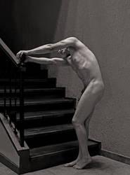 Sisyphus senilis by gfriedberg