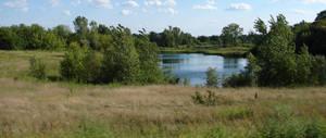 Panoramic Nature Background 1