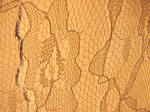 Old Fabric Lace Texure