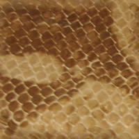 Snake Skin Seamless Texture by FantasyStock