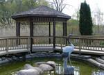 Crane Pond Background 1
