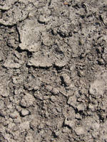 Cracked Earth Dirt Texture 02 by FantasyStock