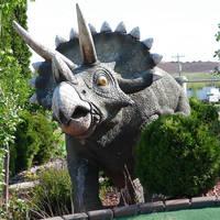 Triceratops Dinosaur by FantasyStock