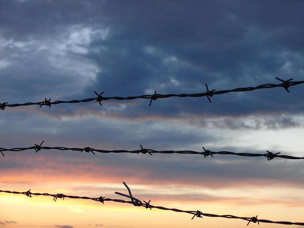 bob wire wallpaper - photo #22