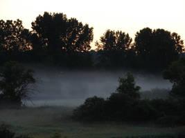 Misty Morning Sunrise 1 by FantasyStock