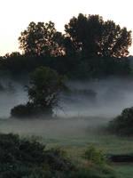 Misty Morning Sunrise 4 by FantasyStock