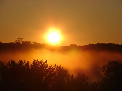 Misty Morning Sunrise 7