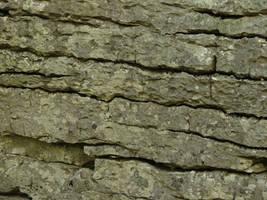 Granite Rock Texture 1 by FantasyStock