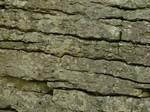 Granite Rock Texture 1